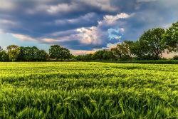 Перевод земли из аренды в собственность