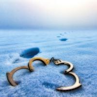 Что нужно знать о снятии судимости