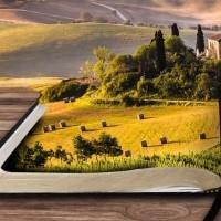 Как узнать обременения земельного участка в 2017 году