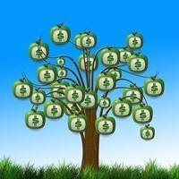 Как выбрать инвестиционный фонд