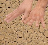 Понятие невостребованных земель