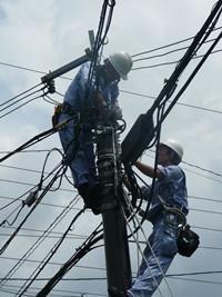 Сколько стоит провести на участок электричество и как это сделать?