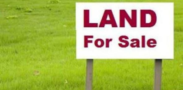 Как продать земельный участок самостоятельно – пошаговая инструкция