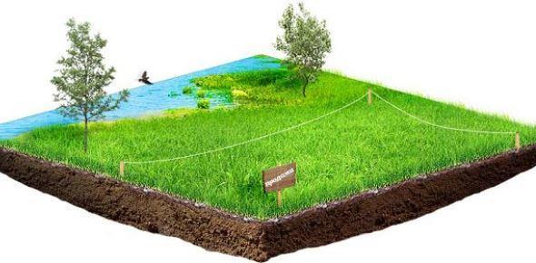Как оформить земельный участок в собственность в 2020 году варианты документы и порядок